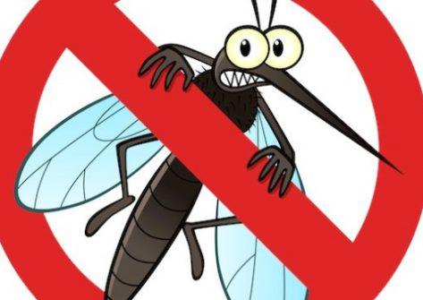 aplikasi andoird, pengusir nyamuk, smartphone